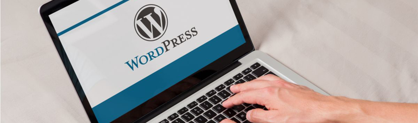 Check Out Here the WordPress Latest Version Features